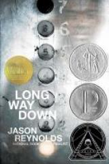 bookcover image for long way down