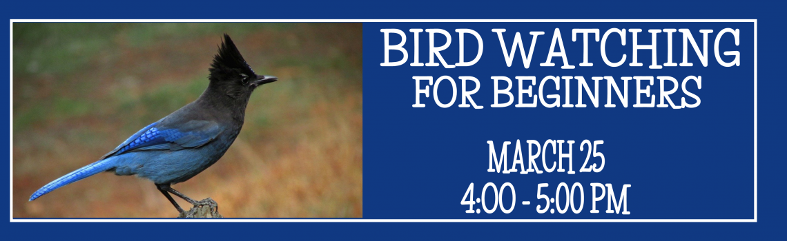 Bird watching for beginners banner
