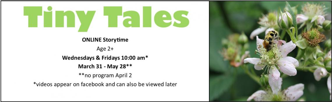 Tiny Tales online mini storytime